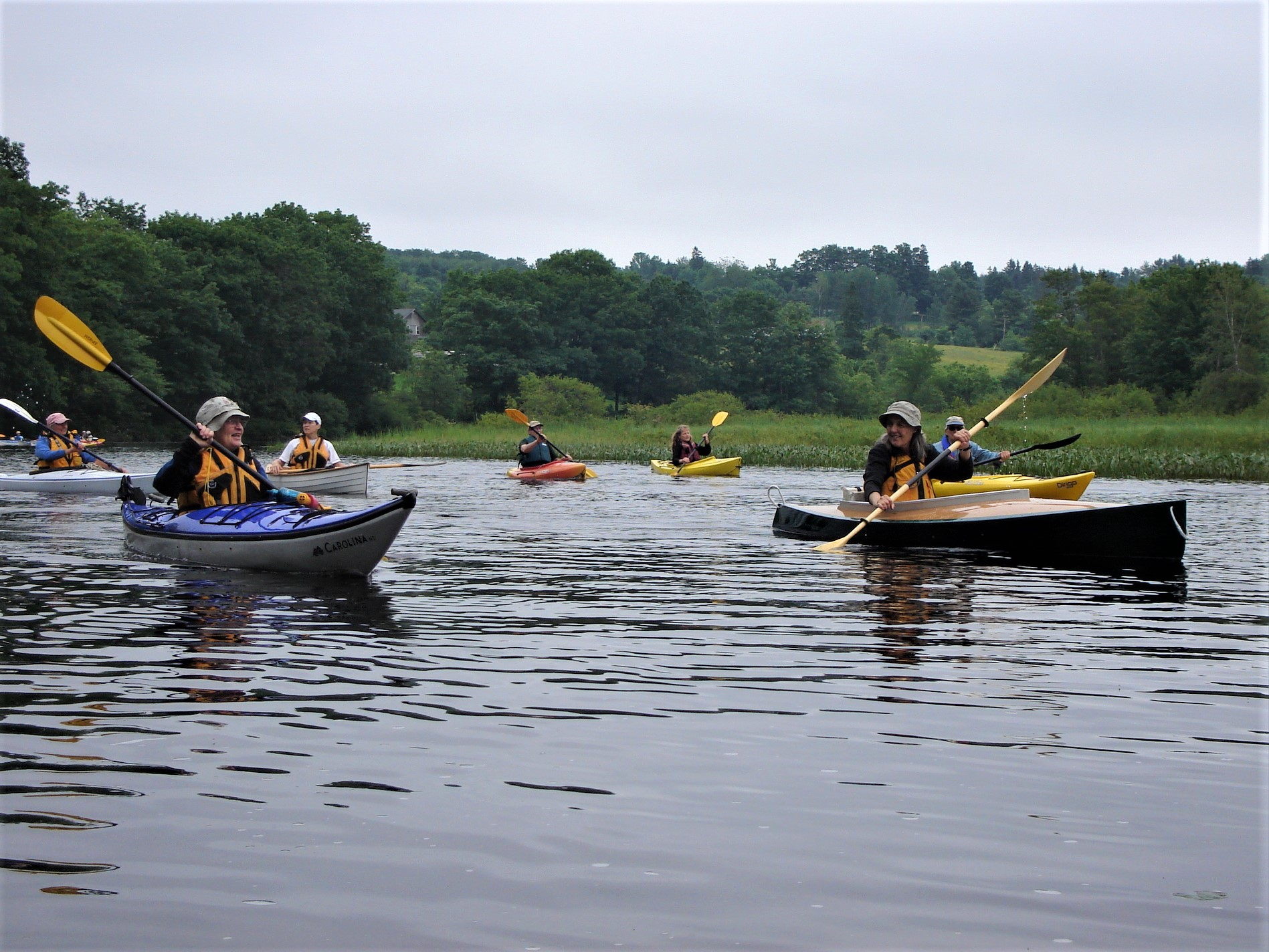 Join the Alewife Run—Paddle to Orland River Day June 30