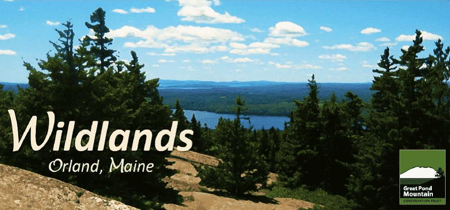 Wildlands Adventure Challenge